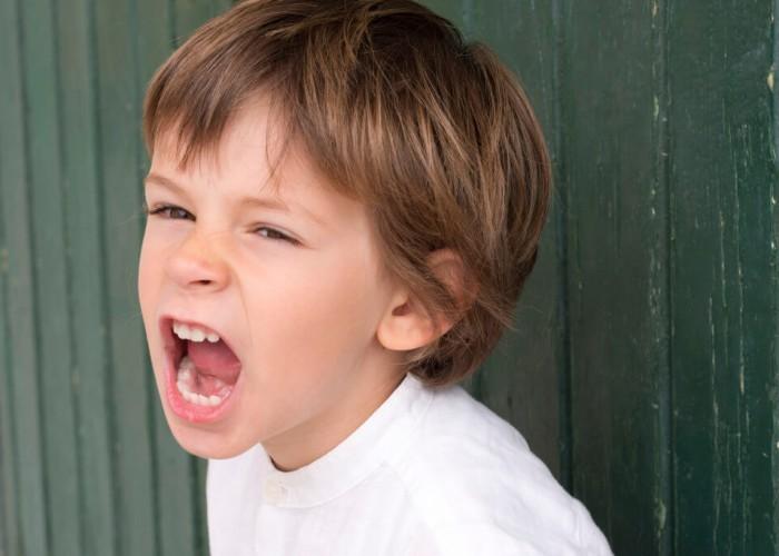 Okul Öncesi Çocuklarda Agresif Davranışlar-3